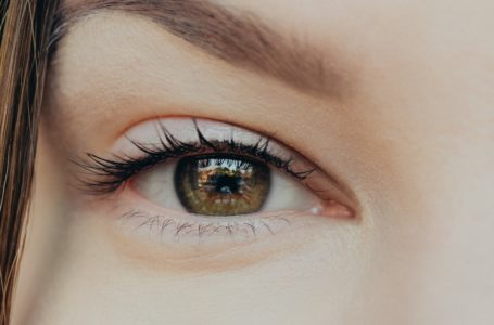 How to Foster Growth of Your  Eyelashes Using Oils