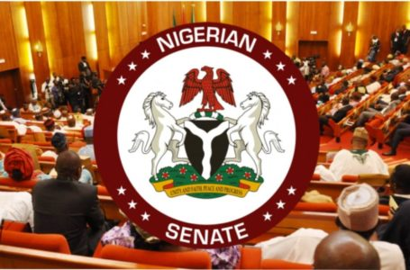 Senate reintroduces 'hate speech' bill which considers death penalty for offenders