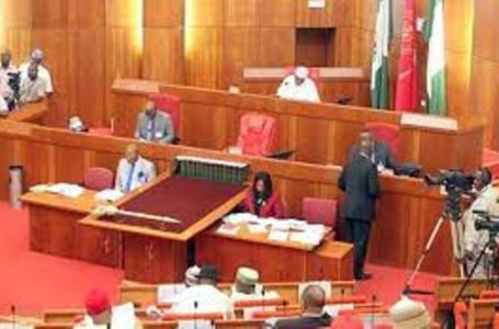 Senate give Nigerians a condition to kill 'hate speech' bill during second reading