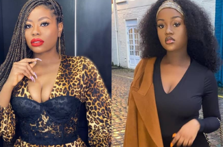 Did Chioma asked Davido to intentionally hurt Sophia because she hates her? – Lady drops bombshell