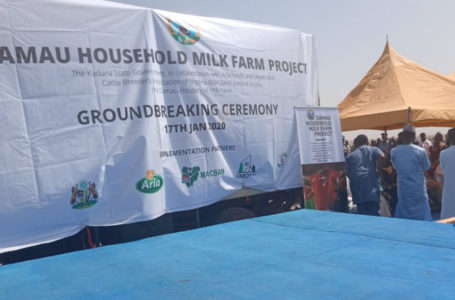 Gov. El-Rufai inaugurates Milk Farm venture for a thousand families