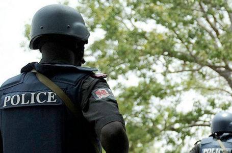 19 children has been rescued from an illegal orphanage in Kano – Police