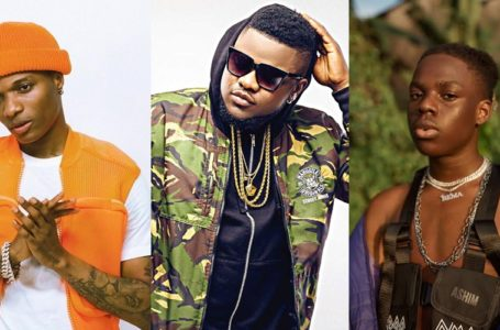 Wizkid's advise to Skales about Rema's music life'