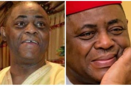 Fani-Kayode calls out WHO over refusal to take African remedy for coronavirus severe