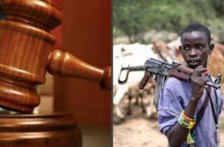 ILLEGAL SETTLEMENTS IN OSHIMILI NORTH LGA,  DELTA STATE: COURT STRIKES OUT FULANI SUIT CHALLENGING EXECUTIVE ORDER II ~ Chijioke Williams Ugbolue